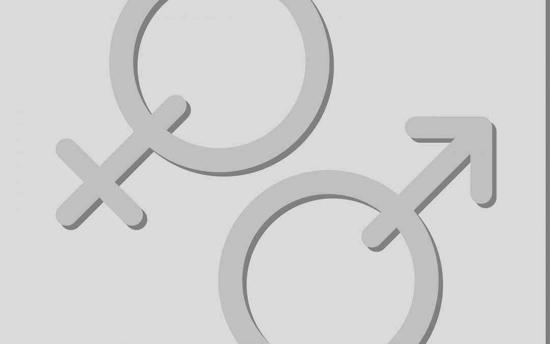 Fragen zur Gleichberechtigung von Männern und Jungen