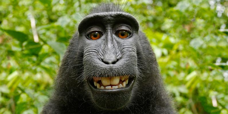 Die aktuell zehn schlimmsten Fehler im Sommer der Selfies